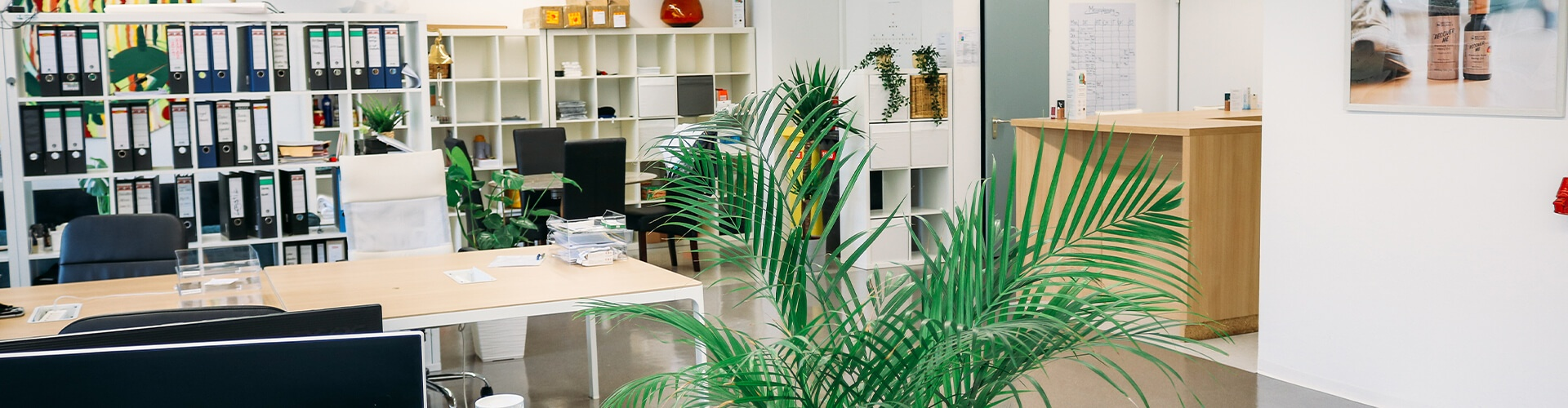 Breathe_Organics-Office_Munich_1920x500
